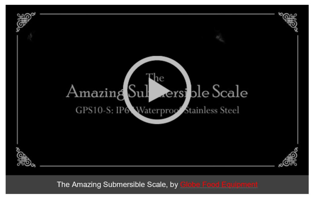 Amazing Globe Submersible Scale